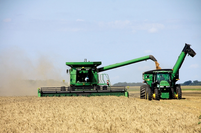 Kathy Ruppe Combines Wheat West Of Danvers Last Friday While Son In Law Dalton
