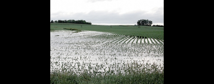 Low areas in fields in western Minnesota were turned into ponds Monday as thunderstorms brought more than 3 inches of rain.