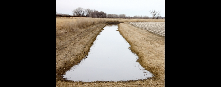 Buffers protect waters from chemical runoff and sediment that accumulates due to erosion. Swift County is working on its buffer ordinance that will put it in compliance with state law.