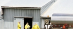 Workers foam a turkey barn last spring to euthanize diseased birds.